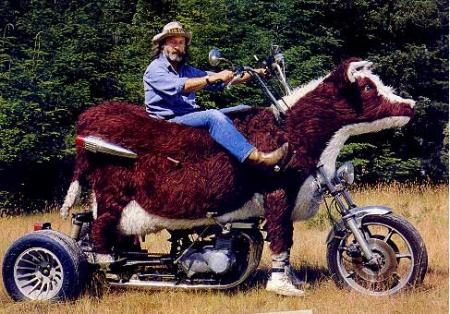 Cowasaki moto vaca